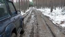 Jarosław Szałata: Las nie nudzi się nigdy
