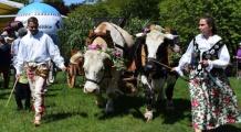 Majowo, zielono i świątecznie, czyli Festyn Zieloświątkowy w Szreniawie